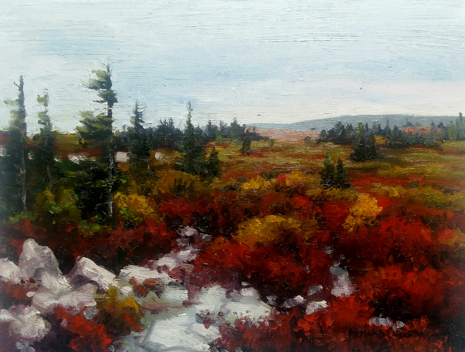 "Dolly Sods   9"" x 12"" Oil   * SOLD! *    Gallery Price:  $1,800    Sale Price:  $900"