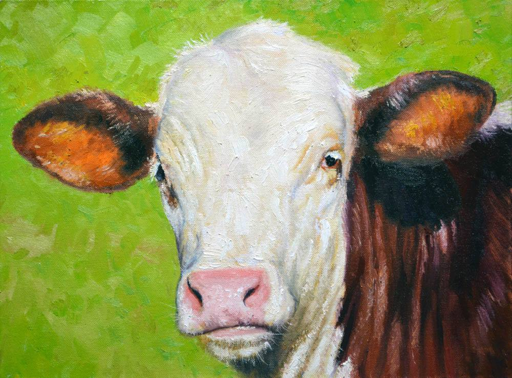 "Moo   12"" x 16"" Oil  * SOLD!*  Gallery Price:  $2,600    Sale Price:  $1,300"