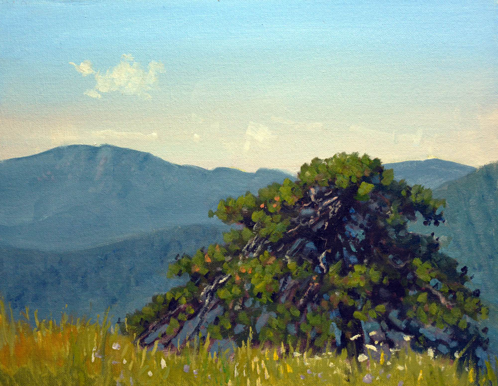 "Old Pine Hazel Mountain Overlook   11"" x 14"" Oil   Gallery Price:  $2,400   Sale Price   $1,200"