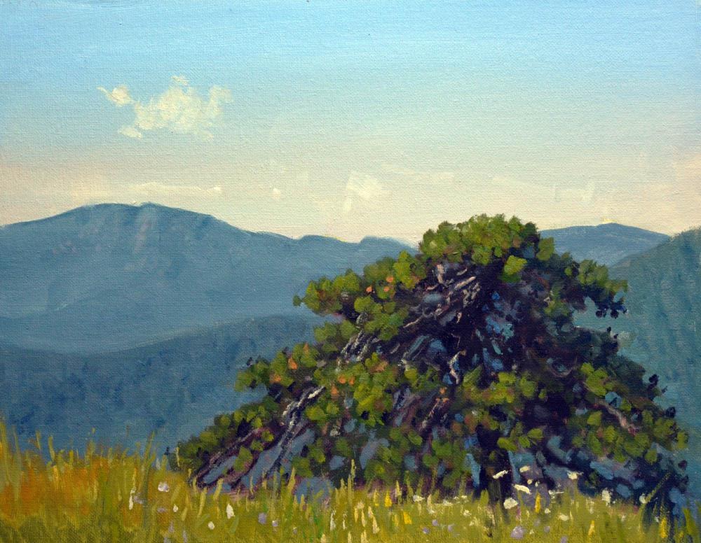 "Old Pine Hazel Mountain Overlook     11"" x 14"" Oil  $2,400      Vista point in Rappahannock County, Virginia"