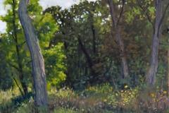"""August Blue Ridge   12"""" x 16"""" Oil  - $2,600"""