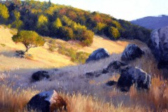 "Miwok Meadows -  20"" x 24"" Oil   -  $4,600"