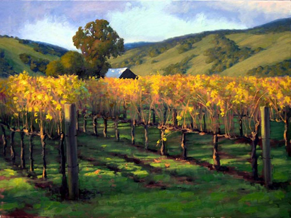 Napa Valley Evening