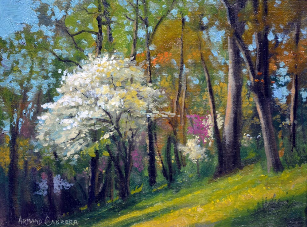 Dogwood in Bloom -   SOLD!