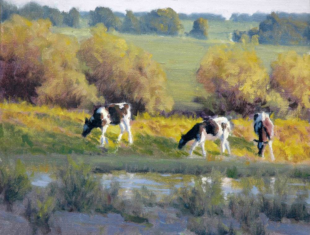 Cows Near A Stream
